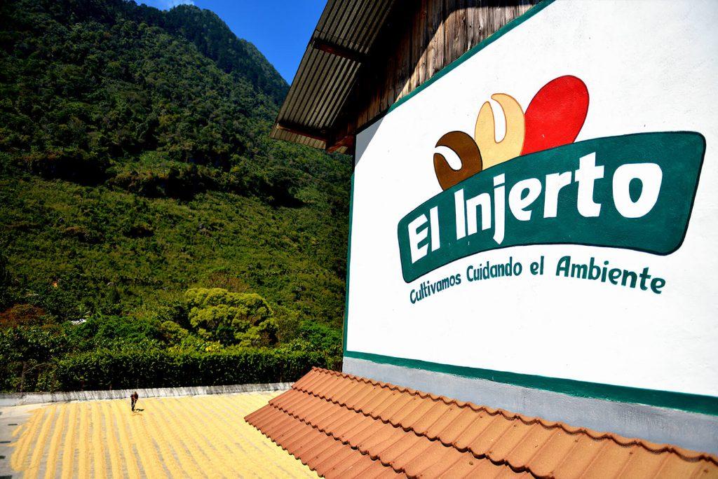 グアテマラ エルインヘルト農園